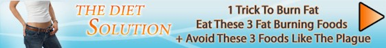 thedietsolutionbanner