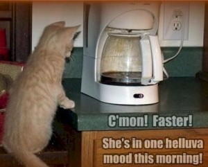 can't make coffee faster