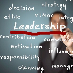 do you show the traits of a leader