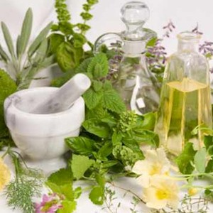 how using herbal based medicines can help you heal