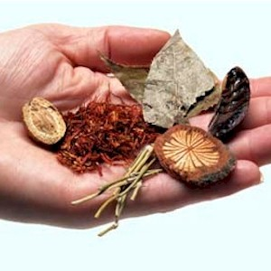 using traditional Chinese herbs to cure illness