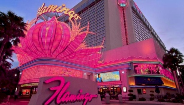 Book a room at the Flamingo Hotel in Las Vegas